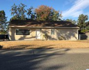 603 Cottonwood Drive, Richland image