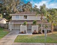 5218 Headland Hills Avenue, Tampa image