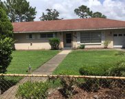 17419 Brown Road, Odessa image