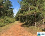 Sportsman Lake Rd Unit 154 Acres, Odenville image