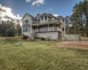 11836 Diamond Road, Custer image