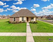 13313 Williamsburg Dr, Walker image