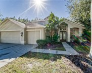 6007 Catlin Drive, Tampa image