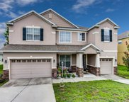 12835 Fish Lane, Clermont image