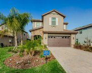19768 Roseate Drive, Lutz image