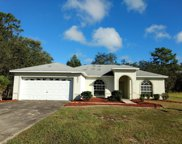 301 Salmon Court, Poinciana image