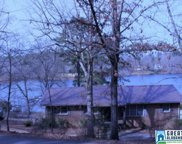 2000 Lake Side Dr, Mccalla image