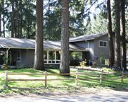 4209 Candlewood Dr SE, Lacey image
