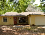 17602 Meadowbridge Drive, Lutz image