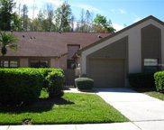 4038 Mermoor Court, Palm Harbor image