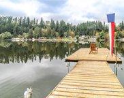 39112 Ski Park Road E, Eatonville image