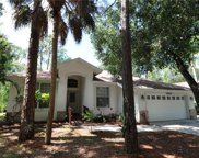 15700 Red Fox RUN, Fort Myers image