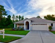 15801 Leatherleaf Lane, Land O' Lakes image