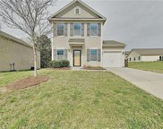 1491 Hyacinthia  Lane, Rock Hill image