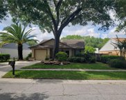 12321 Witheridge Drive, Tampa image