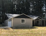 10728 Madrona Dr, Anderson Island image