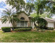 234 Blue Stone Cir, Winter Garden image