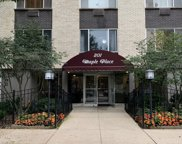 201 South Maple Avenue Unit 111, Oak Park image