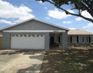 14501 Sutter Place, Tampa image