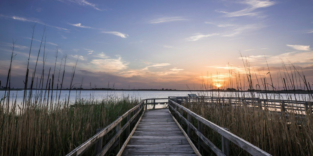 buddhist singles in chesapeake beach Single family homes for sale in chesapeake beach, md have a median listing price of $299,900 and a price per square foot of $191 there are 51 active single family homes.