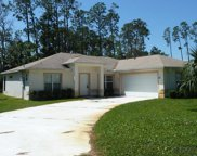 3 WILLOUGHBY PL, Palm Coast image