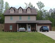 319 Woodhaven Dr, Pell City image