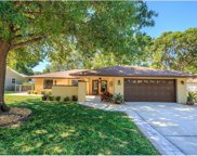 1259 Fran Mar Court, Clermont image
