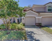 2047 Carriage Lane Unit 103, Clearwater image