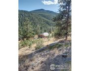 10683 Twin Spruce Rd, Golden image