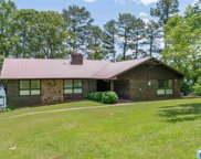 5033 Forest Dr, Pell City image