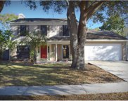 2414 Bucknell Drive, Valrico image