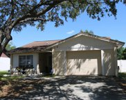 1603 Palm Leaf Drive, Brandon image