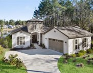 7 Blue Trail Ct, Bluffton image