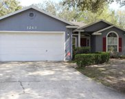 1243 WINDY WILLOWS DR, Jacksonville image