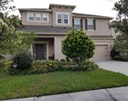 7977 Pleasant Pine Circle, Winter Park image