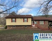 1947 Sand Valley Rd, Remlap image