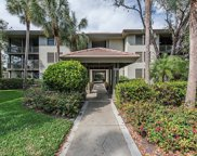 3641 Wild Pines Dr Unit 307, Bonita Springs image