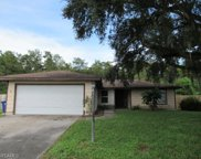15484 Spring Line LN, Fort Myers image