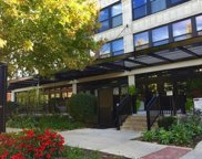1001 West 15Th Street Unit 319, Chicago image