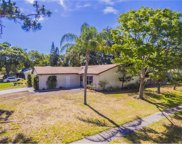 2567 Elderberry Drive, Clearwater image