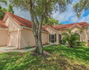 1154 Woodleaf Court, Palm Harbor image