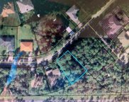 84 Point of Woods Dr, Palm Coast image