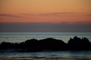 Pacific Grove Ocean Views
