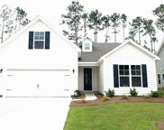 132 Laurel Hill Place, Murrells Inlet image