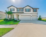 11626 Tetrafin Drive, Riverview image