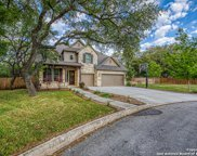 9502 Bow Willow, San Antonio image