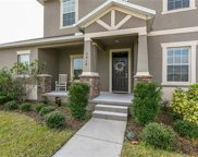 6818 Butterfly Drive, Harmony image
