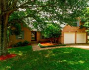 807 Raleigh Ct, Old Hickory image