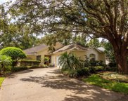 6022 Spring Creek Court, Mount Dora image