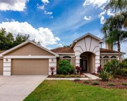 18702 Forest Glen Court, Tampa image